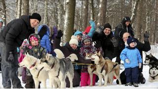 Хаски и олени! Экскурсия «Знакомство с северными оленями и ездовыми собаками хаски», романтический или семейный отдых от WalkService!